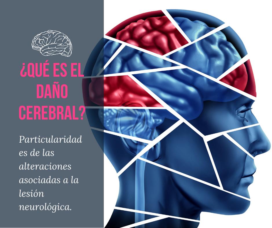 Seminario Web ¿Qué es el daño cerebral?