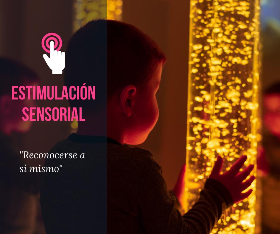 Seminario Web Estimulación Sensorial